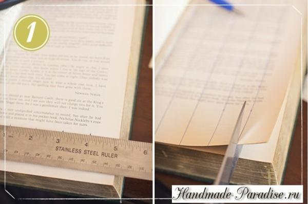 los copos de nieve de las páginas del libro (3)