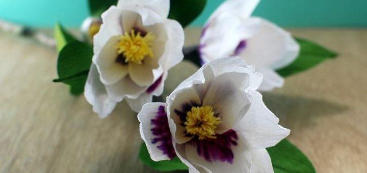 Цветы магнолии из гофрированной бумаги