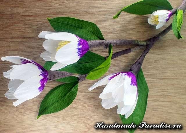 Цветы магнолии из гофрированной бумаги (5)