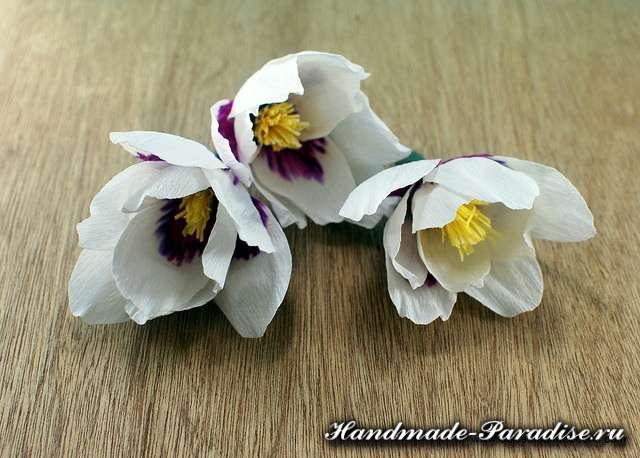 Цветы магнолии из гофрированной бумаги (6)