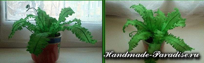 Комнатное растение из гофрированной бумаги. Папоротник (2)