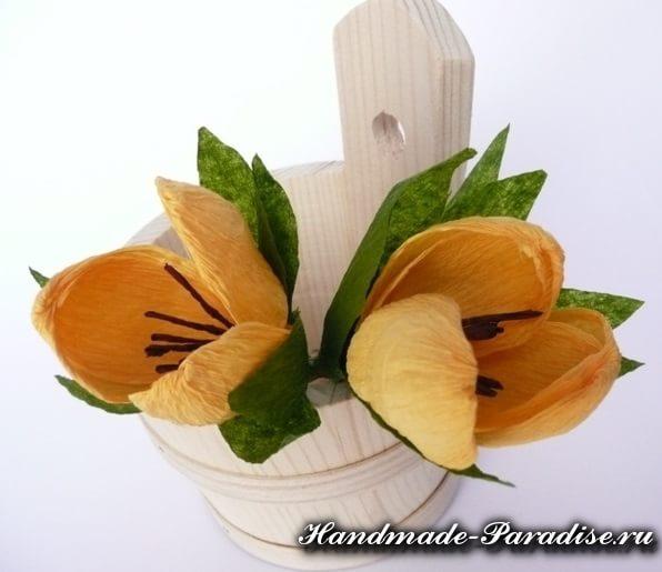 Весенние цветы из гофрированной бумаги (10)