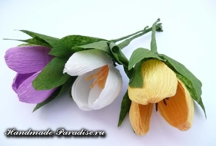 Весенние цветы из гофрированной бумаги (11)