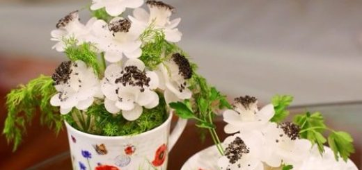 Букет цветов из редиски