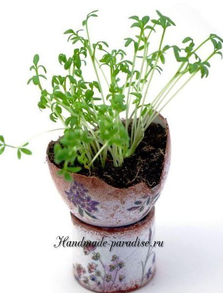 Проростки в скорлупках для пасхального интерьера (12)