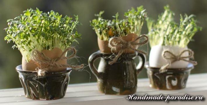 Проростки в скорлупках для пасхального интерьера (3)