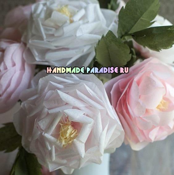 Чайные розы из папиросной бумаги (2)