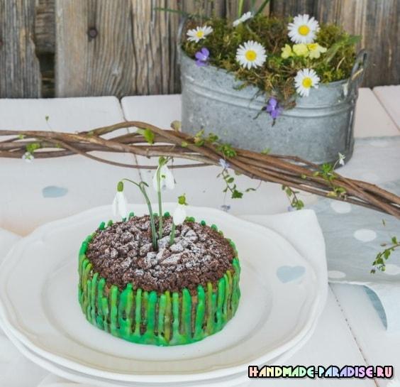 Весенний шоколадный торт с подснежниками (2)
