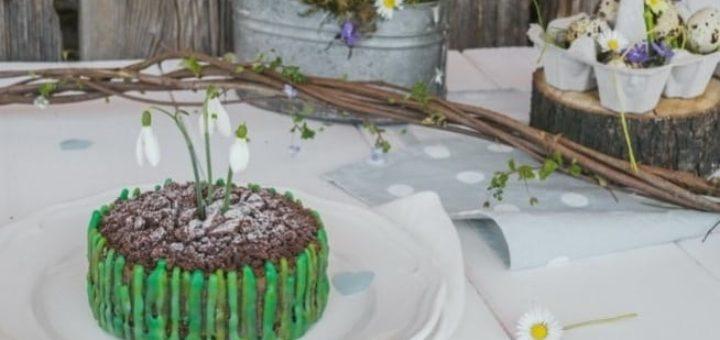 Весенний шоколадный торт с подснежниками