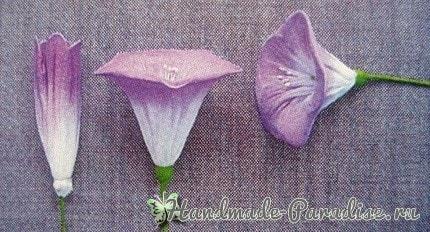 Ипомея - цветок утренней зари из капрона (3)