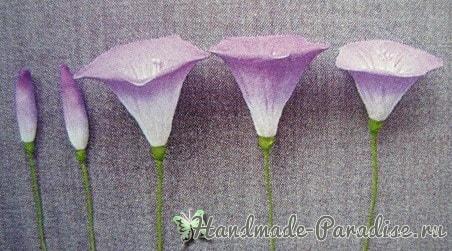 Ипомея - цветок утренней зари из капрона (4)