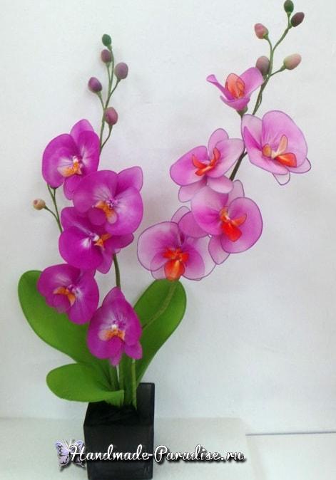 Орхидея Фаленопсис из капрона. Мастер-класс (15)
