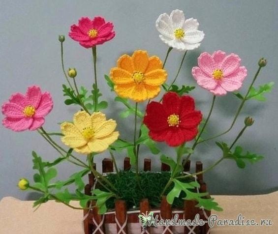 Весенние полевые цветы крючком. Схема (2)