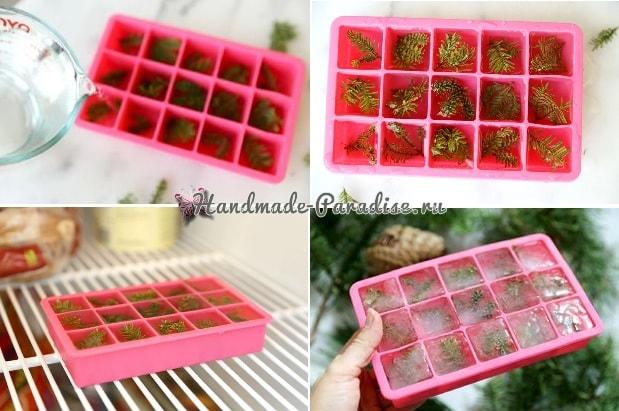 Кубики льда с сосновыми веточками (6)