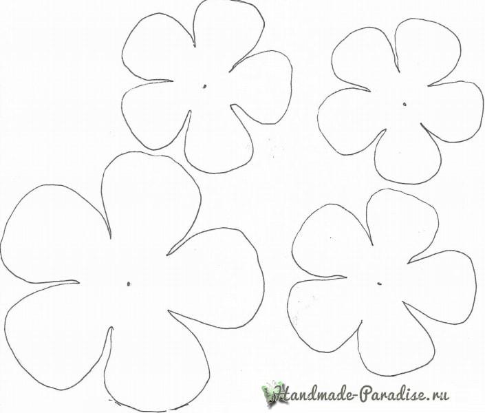 Ранункулюс - садовый лютик из бумаги (3)