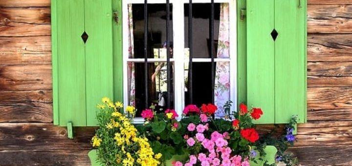 Красим деревянные окна в дачном домике