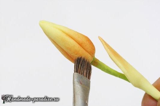Нарциссы из холодного фарфора (15)