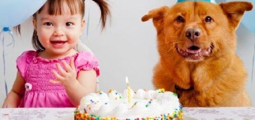 Как создать незабываемый день рождения для своего чада