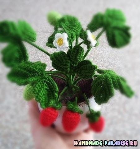 Цветущая клубника крючком. Схемы (8)