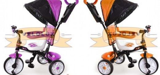 Трехколесный велосипед Rich Toys Family