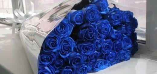 Что означают синие розы