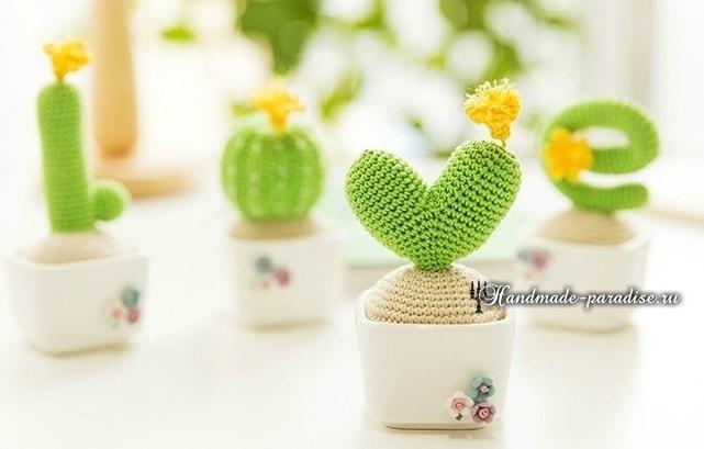 love-iz-vyazanyih-kryuchkom-kaktusov-shemyi-5