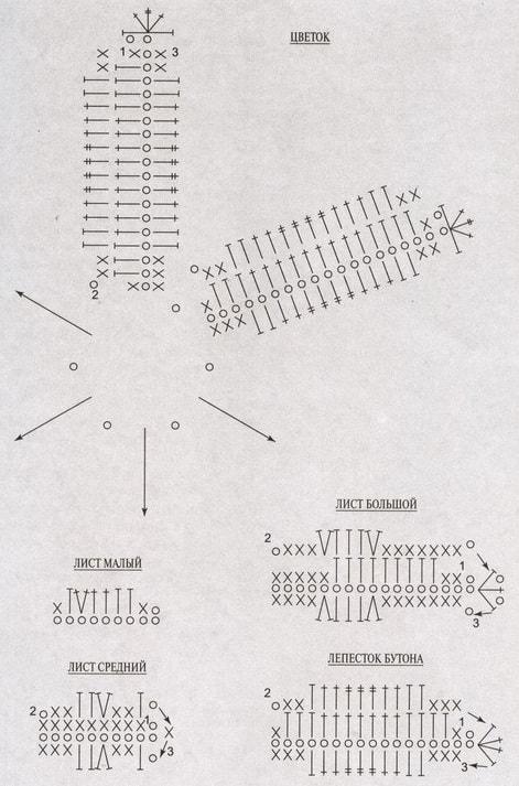 tsvetyi-kryuchkom-liliya-7