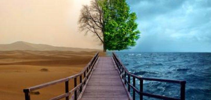 Гештальт-терапия - современное направление психотерапии