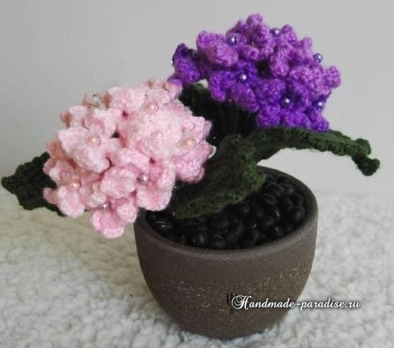 gortenziya-kryuchkom-shemyi-vyazaniya-5