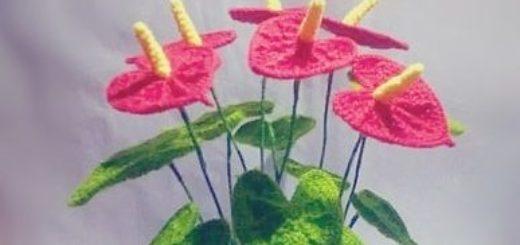 Антуриум или цветок Фламинго крючком. Схема (2)