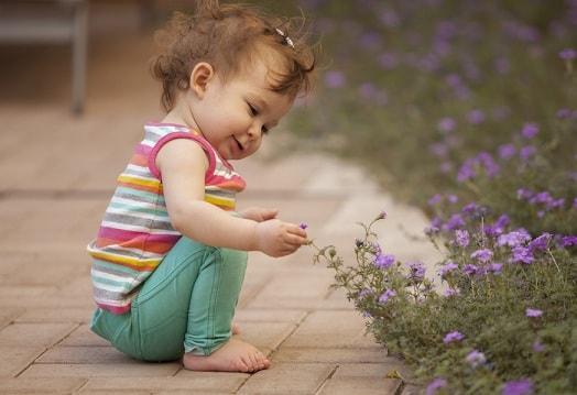Опасные для детей комнатные растения (4)
