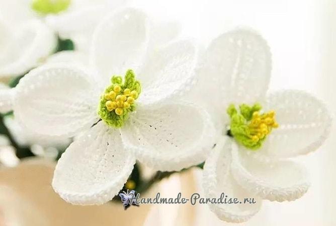 Весенние цветы крючком. Схемы вязания (7)