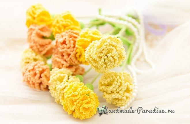 Цветы handmade. Вяжем крючком гвоздики (5)