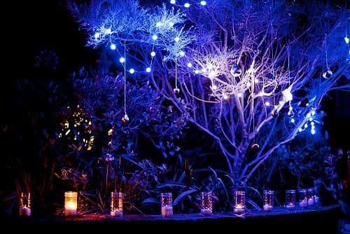 Безопасность и важность наружного освещения в саду (2)
