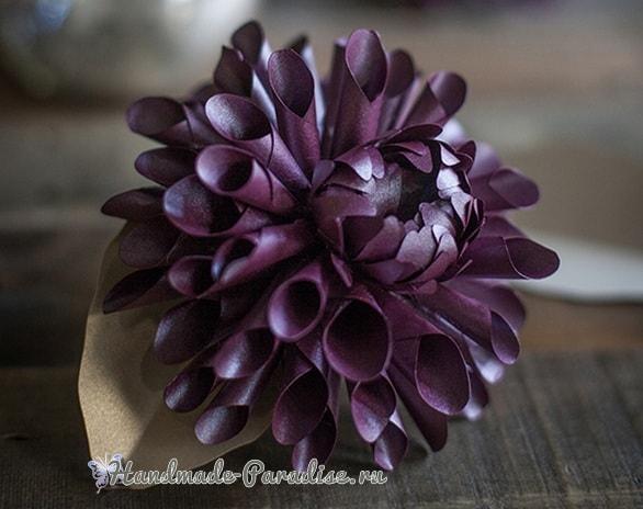 Фиолетовые георгины из бумаги. Шаблоны (1)
