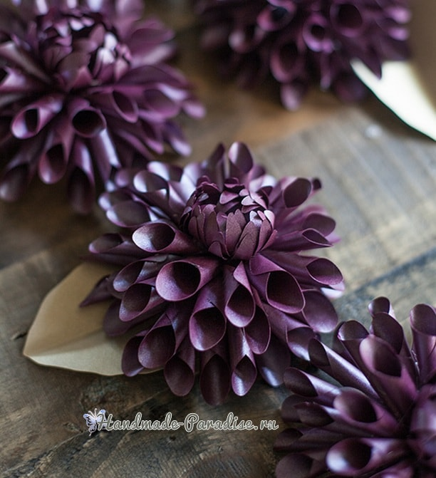 Фиолетовые георгины из бумаги. Шаблоны (2)
