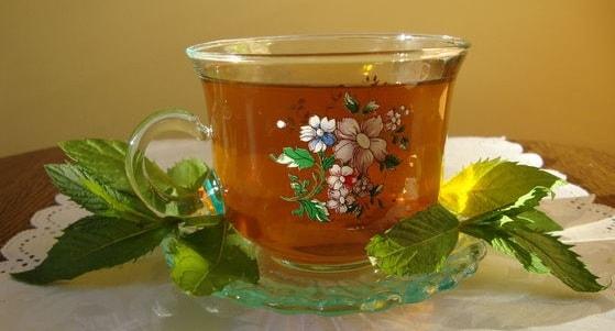 Как правильно заваривать мятный чай (1)