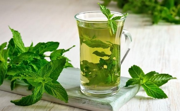 Как правильно заваривать мятный чай (2)
