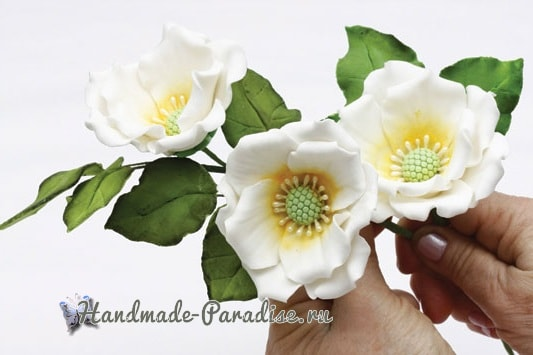 Цветы шиповника для украшения торта (9)