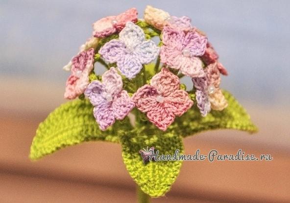 Цветы гортензии крючком. Схема (2)
