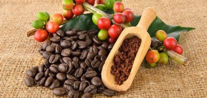 Где купить кофе оптом (2)