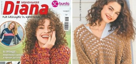 Журнал «Маленькая Diana 2017-11» (1)