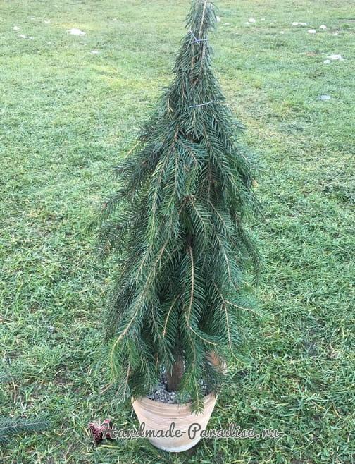 Новогодняя елка своими руками из хвойных веток (3)