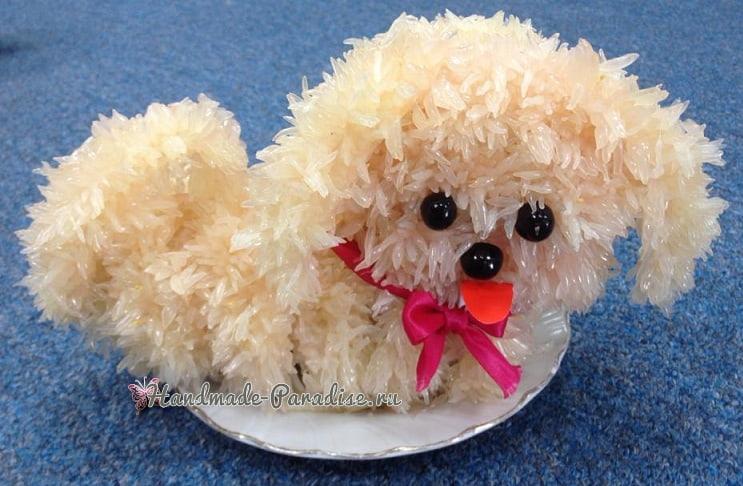 Новогодняя собачка из грейпфрута (10)