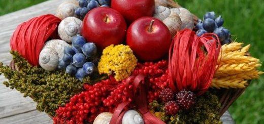 Плетение корзинки из виноградной лозы (3)