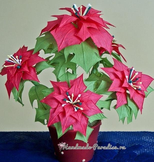 Рождественская звезда - Пуансеттия из бумаги (1)