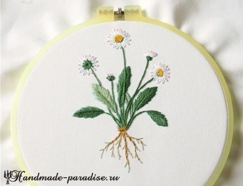 Ботаническая вышивка. Полевые ромашки (1)
