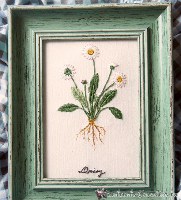 Ботаническая вышивка. Полевые ромашки (3)