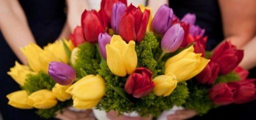 Букет тюльпанов в подарок