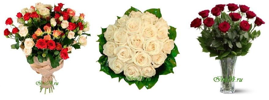 Доставка цветов к 8 Марта, что лучше - срезанные или горшечные растения (1)